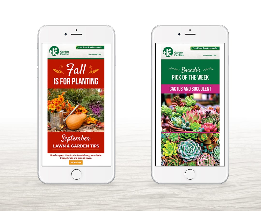 TLC Garden Centers Email Design by Liquid Media